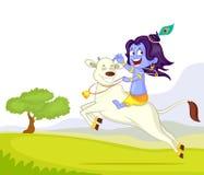 Krishna Janmashtami Royalty Free Stock Photo