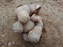 Kristal geweven steen met zand in de schaduw gestelde achtergrond geweven behang als achtergrond, overzees Oceaan royalty-vrije stock foto