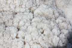 Kristalle des Salzes Stockfoto
