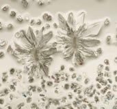 Kristalle in polarisierter Leuchte Stockbild