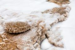 Kristallijn zout op strand van Dode Overzees Stock Afbeelding