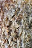 Kristalliserad mineralisk yttersida Arkivfoto