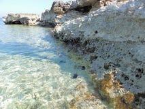 Kristallklart vatten av udde Kamenjak, Istria, Kroatien arkivbilder