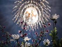 Kristallkrona och konstgjorda blommor Fotografering för Bildbyråer