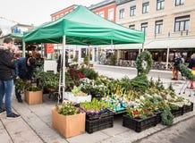 Kristansand,挪威, 2017年12月22日:在正方形的花店在克里斯蒂安桑,卖为圣诞节开花 免版税图库摄影