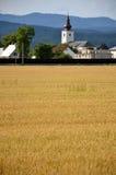 Kristen kyrka som en del av byn, forested kullar i bakgrund, gult fält av korn i förgrund royaltyfri fotografi