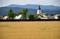 Kristen kyrka som en del av byn, forested kullar i bakgrund, gult fält av korn i förgrund royaltyfri bild