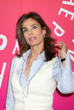 Kristian Alfonso Stock Image