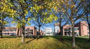 Kristiansand, Noorwegen - November 5, 2017: De buitenkant van de Universiteit in Kristiansand, UiA Bomen in de voorzijde stock foto's