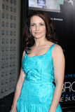 Kristin Davis arrives at HBO's  Stock Photography