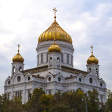 Kristus frälsaredomkyrkan, Moscow Fotografering för Bildbyråer