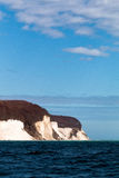 Kritaklippa på ön av Ruegen, Tyskland Royaltyfri Fotografi