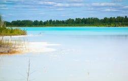 Kritiek milieugebied met gevaarlijk alkalisch meer royalty-vrije stock afbeeldingen