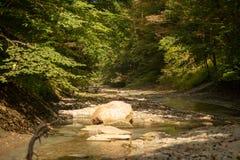 Kritisera botten av liten vik på senare sommar för lågvatten arkivbild