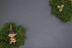 Kritisera brädet med mossa, ekollonar och gnom Royaltyfri Fotografi