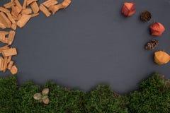 Kritisera brädet med mossa, sidor, ekollonar och pumpa Arkivbild