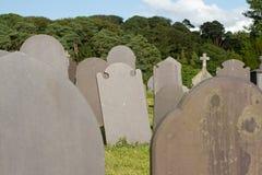 Kritisera gravestones. fotografering för bildbyråer
