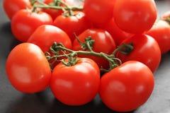 Kritisera plattan med nya mogna tomater Royaltyfri Bild