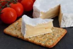 Kritiserar mjuk ost för Brie med smällare och tomaten på en grå färg galten Arkivbilder