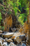 Kritsa wąwóz blisko Agios Nikolaos na Crete Zdjęcia Stock