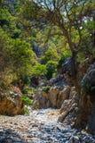 Kritsa wąwóz blisko Agios Nikolaos na Crete Obraz Stock