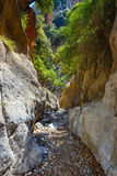 Kritsa wąwóz blisko Agios Nikolaos na Crete Fotografia Stock