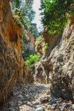 Kritsa wąwóz na Crete, Grecja Zdjęcia Royalty Free