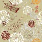 Kritzeln Sie Hintergrund mit Zitrusfrucht, Vogel und Schneeflocken, nahtloser Klaps Stockbild