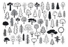 Kritzeln Sie umrissene Bäume der Parkwaldnadelbaum-Zusammenfassung Schattenbilder Vektor Abbildung