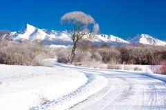 Krivan山在高Tatras,斯洛伐克 库存照片