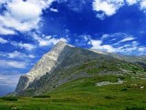 krivan berg Royaltyfria Bilder