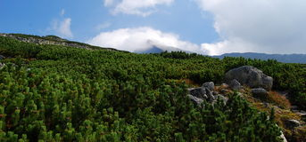 Krivan, de Bergen Tatra Royalty-vrije Stock Foto