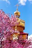 Kriviy Rih, de Oekraïne, 22 April, 2015 Gouden koepels van Orthodoxe churchs Stock Fotografie