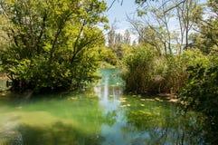 Krka国家公园位于克罗地亚并且为它的七瀑布是知名的 库存照片