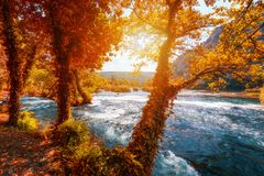 Krka national park with autumn colors of trees, famous travel destination in Dalmatia of Croatia. Krka waterfalls in the Krka royalty free stock photos