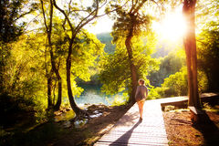 Krka sunset forest walk Stock Photography