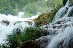 Krka waterfalls (Croatia) Stock Photography