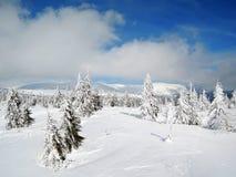 Krkonoše mountains - frozen trees. Snow in CZECH REPUBLIC Royalty Free Stock Photos