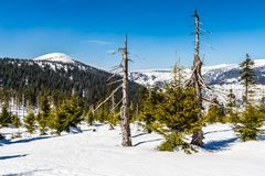 Krkonose大山在冬天- Czechia 免版税图库摄影