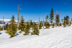 Krkonose大山在冬天- Czechia 库存图片
