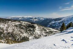Krkonose大山在冬天- Czechia 免版税库存图片