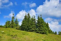 Krkonose山,捷克,波兰 库存图片