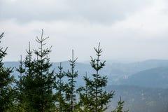 Krkonose berg nära Harrachov, Tjeckien royaltyfri foto