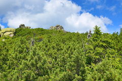 Krkonose-Berge, Tschechische Republik, Polen Lizenzfreie Stockbilder