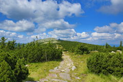Krkonose-Berge, Tschechische Republik, Polen Stockfoto