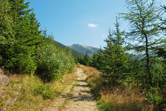 Krkonose mountains, Czech republic Royalty Free Stock Photos
