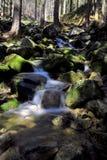 Krkonose stream Stock Image