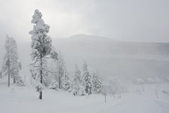krkonose zima Zdjęcie Stock