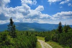 Krkonosebergen, Tsjechische Republiek, Polen Stock Foto