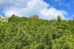 Krkonosebergen, Tsjechische Republiek, Polen Royalty-vrije Stock Afbeeldingen